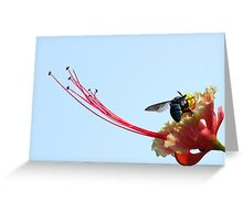 A Blue Bee Greeting Card