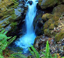 Susan Creek Waterfall Series by goddessteri211