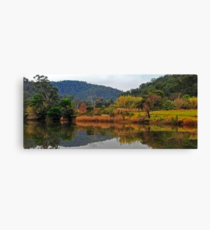 View From Settlers Road Canvas Print