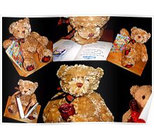 Teddy © Poster