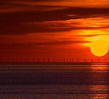 Sun and Wind Energy by David Orias