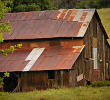 Old Rusted Barn by Xcarguy