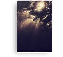Angels Called Home Canvas Print