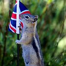 Jasper Recruited Chippy To Represent the UK by Betsy  Seeton