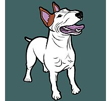 Happy Bull Terrier  Photographic Print