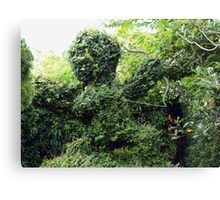Cupid topiary Canvas Print