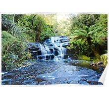 CORA-LYN CASCADES IN THE OTWAY RANGES Poster