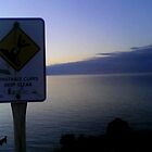 Danger! Beautiful Veiws Ahead! by Renee7