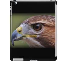 Hawk Eye iPad Case/Skin