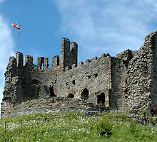Dudley Castle by Robert Taylor