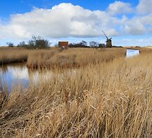 Brograve mill windpump by chris2766