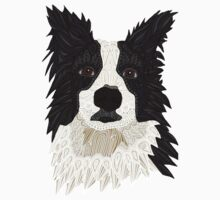 Border Collie Kids Clothes