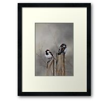 """Spuggies on the fence"" Framed Print"