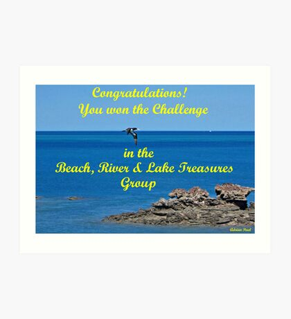 Beach, River & Lake Treasures Challenge Banner entry Art Print
