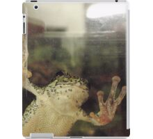 Frog On Glass iPad Case/Skin