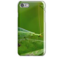 Green Lacewing iPhone Case/Skin