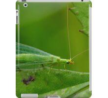 Green Lacewing iPad Case/Skin