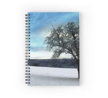 Alone in the cold Spiral Notebook