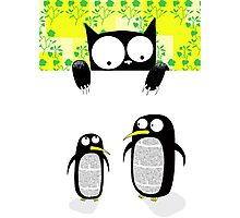Paper Penguins  Photographic Print