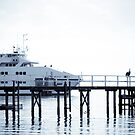 The Sorrento Ferry 2 by pennyswork