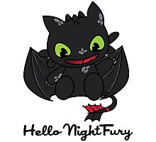 Hello Night Fury Photographic Print