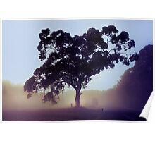 Valley Fog Poster