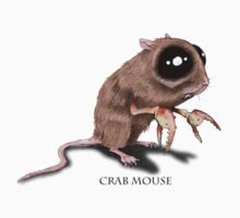 Crab mouse by Chris Harrendence