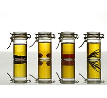 aromatic olive oils Photographic Print