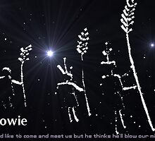 Starman, Bowie by Digby
