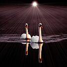 Swans Together by Jim Wilson