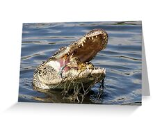 I like the mustard inside a Crab and so does this Gator Greeting Card