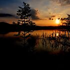 Sunset at Lake Kochelsee 03 by Daidalos