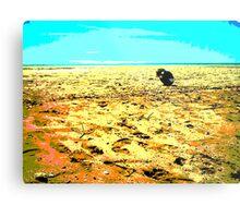 Gone Fishing ~ Buffalo Creek ~ Northern Territory Metal Print