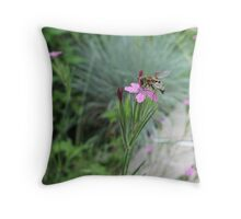 """""""fake wasp"""" on tiny pink flower Throw Pillow"""