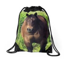 """""""Horses with Attitude no. 3, """"You Wanna Piece of This?'""""... prints and products Drawstring Bag"""