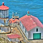 Lighthouse - Point Reyes California by mrthink