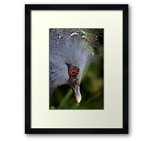 With my crown ... Framed Print
