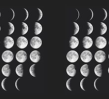 Moon Phases by phantastique