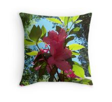 Afternoon with Azaleas Throw Pillow