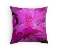 Breathtakingly Beautiful Throw Pillow