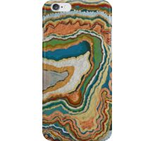 Lichen iPhone Case/Skin