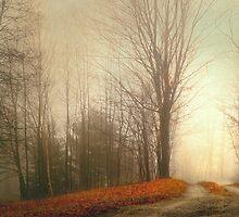 Emptyness by Gisele Bedard