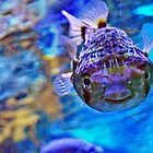 Happy pufferfish by missmoneypenny