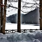 Frozen Lake by Cathy Cale