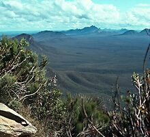 198208300022 Stirlings from our highest point bluff knoll path Stirling Ranges by Fred Mitchell