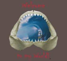Welcome to my World by AGGRO