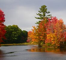 Autumn on the Little Androscoggin (Please View Large) by Judith Hayes