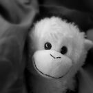 Elvis the Monkey by Mellinda