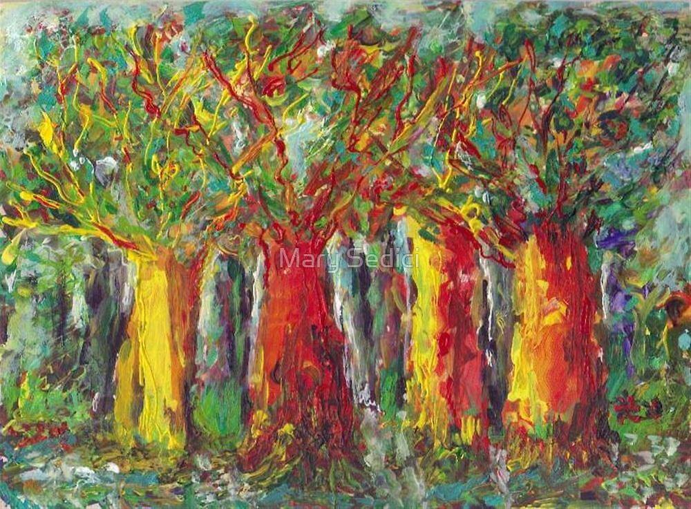 Rainbow Forest  by Mary Sedici