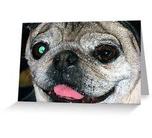 big pun  i mean big pug Greeting Card